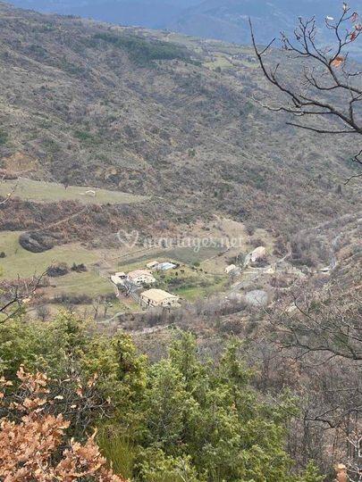 Domaine Le Mas du Galifan 5