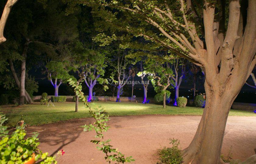Le parc le soir