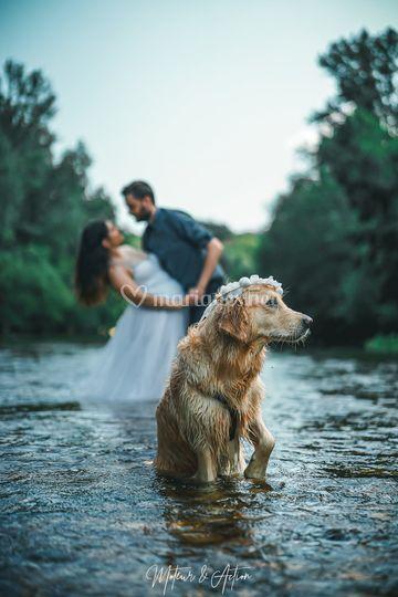 Chien riviere photo couple