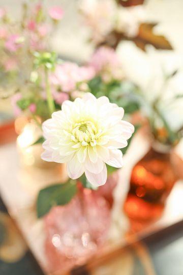 Decoration florale