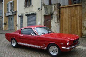 Mustang à louer