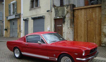 Mustang à louer 1