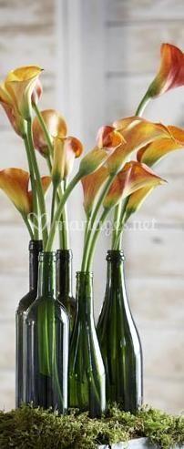 Fleurs et bouteilles
