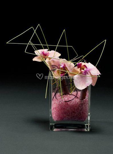 Orchidée graphique