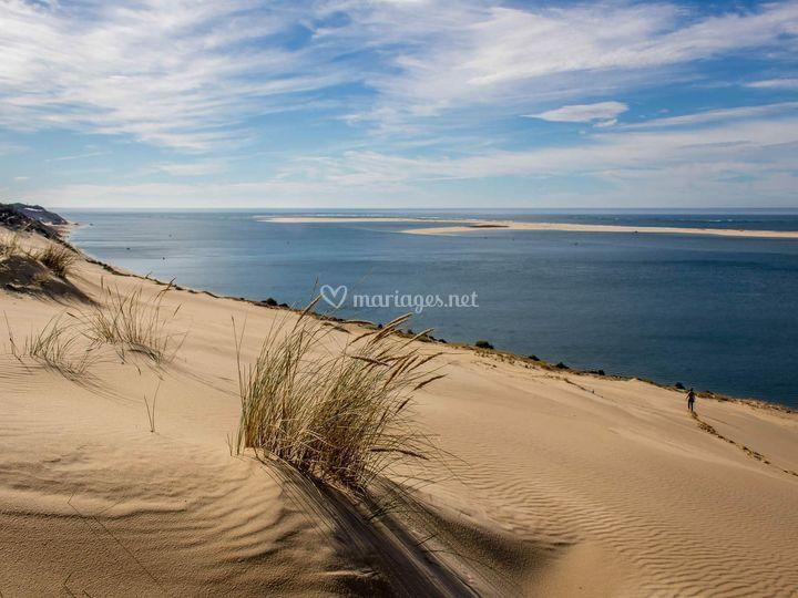 Proche de la Dune du Pilat