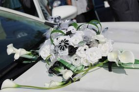 Wedding Cars Moselle