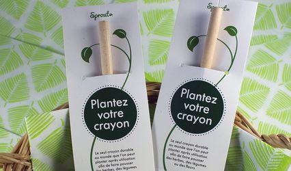 Petite Plante