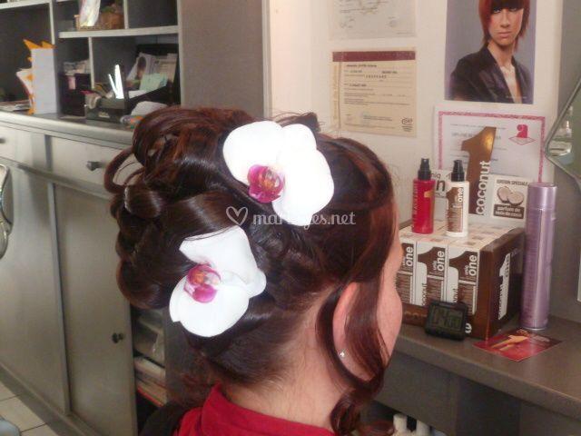 Millénium coiffure