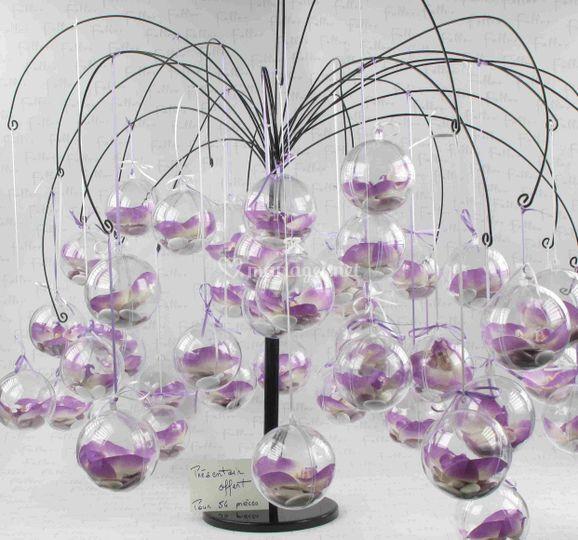 Présentoir avec orchidées