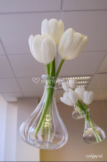 2014 - Blanc & Touches de vert