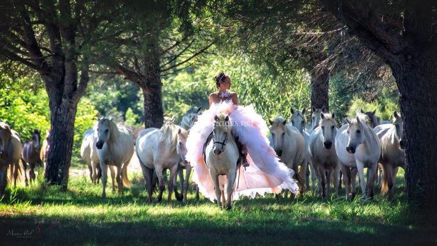 Mariée à cheval 🐴