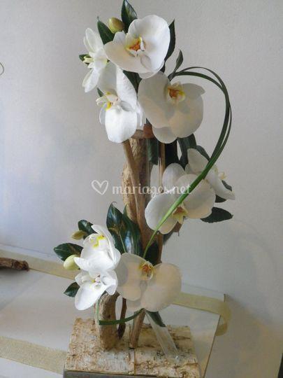 Decor orchidée