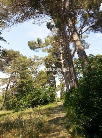Le Parc de Malbouissou