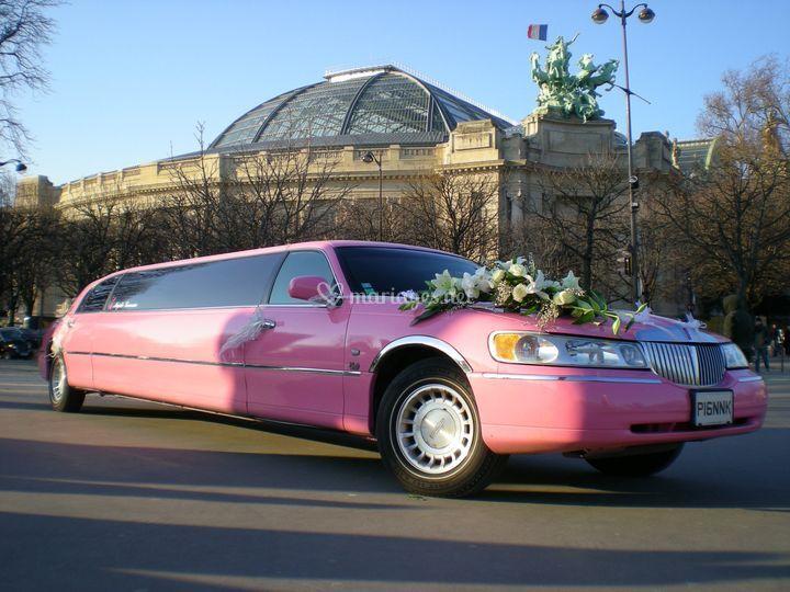 Limousine rose