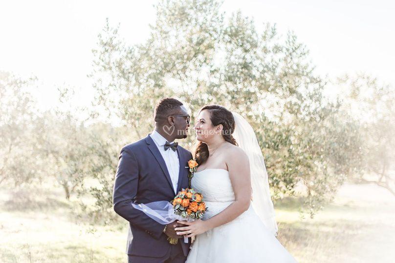 Mariés dans les oliviers
