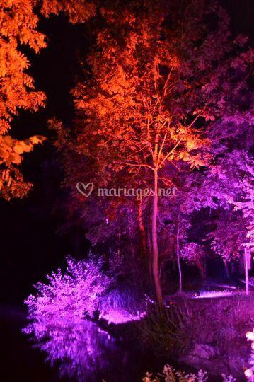 Eclairage d'un parc (LED's)