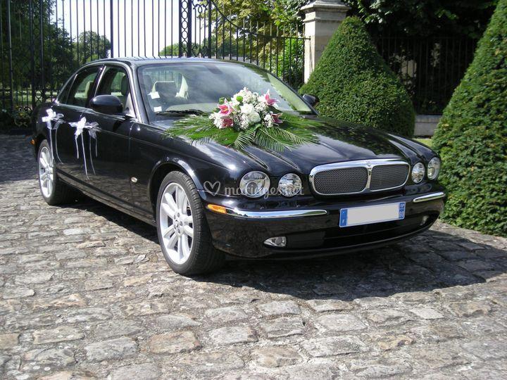 Jaguar Severeign