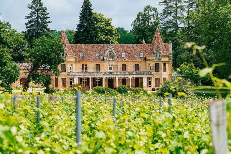 Château au milieu du vignoble
