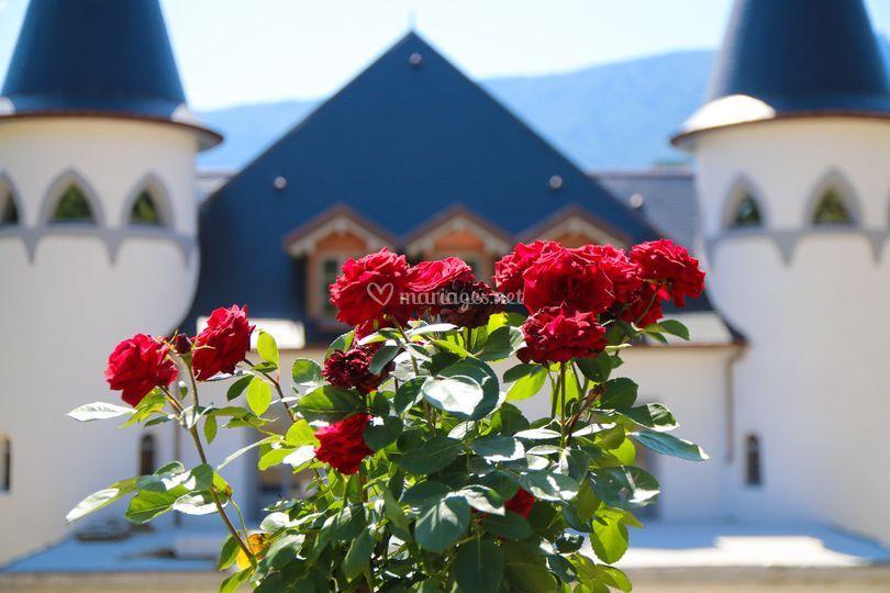 Les roses du parc