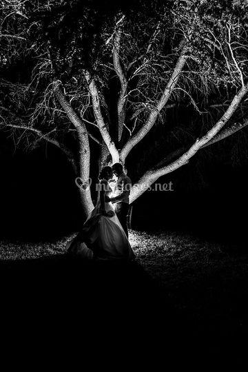 Séance de nuit