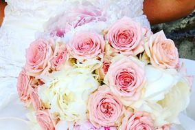 Eclat Floral