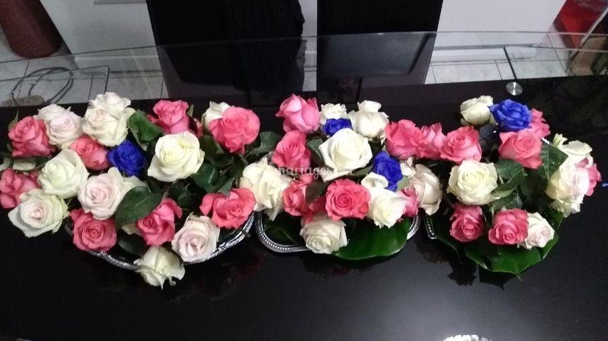 Bleu blanc rose