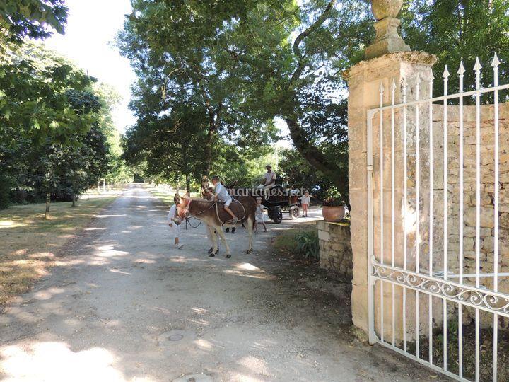 Entrée de Domaine du Bois Photo 26 # Domaine Du Bois Saint Laurent De La Prée