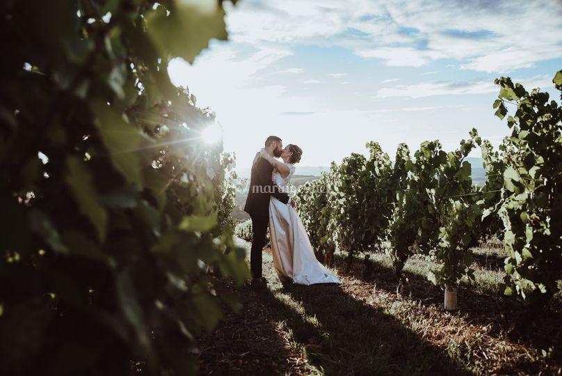 Bisou dans les vignes