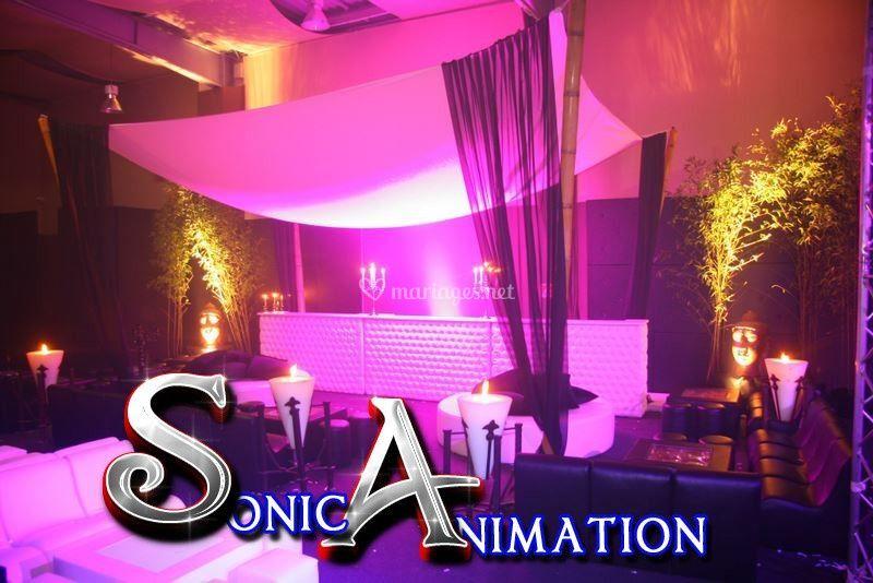 Sonic-animation