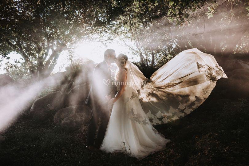 Féerie des mariés