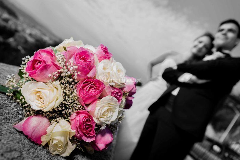 Noir, blanc et rose