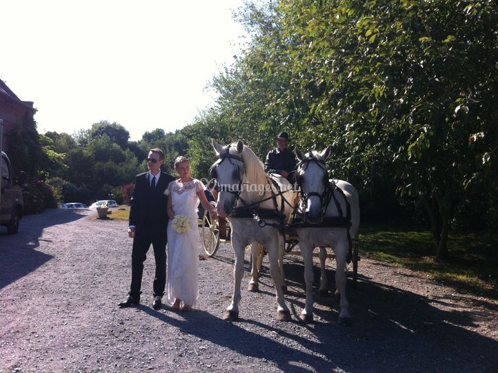 Mariage en Seine-Maritime
