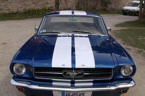 Breizh Mustang