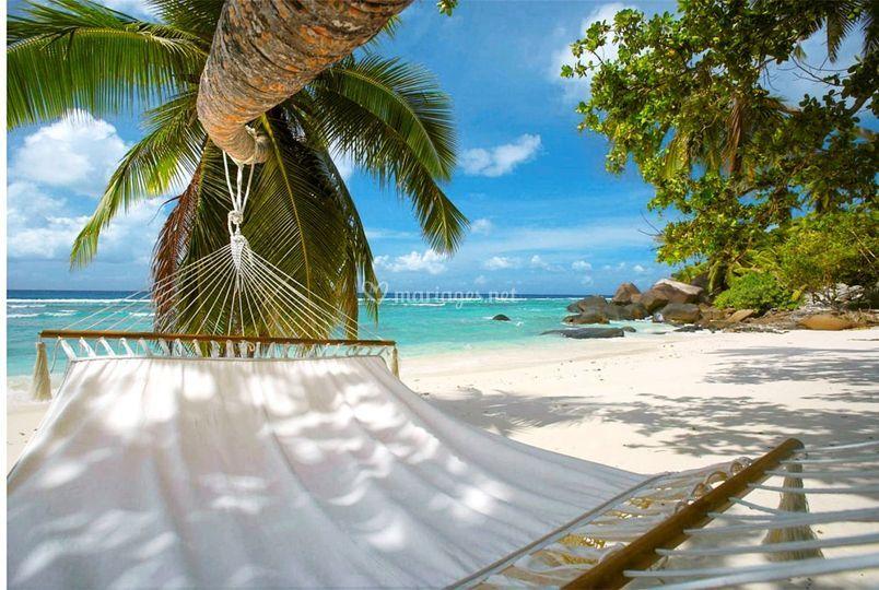 Se relaxer sur une plage