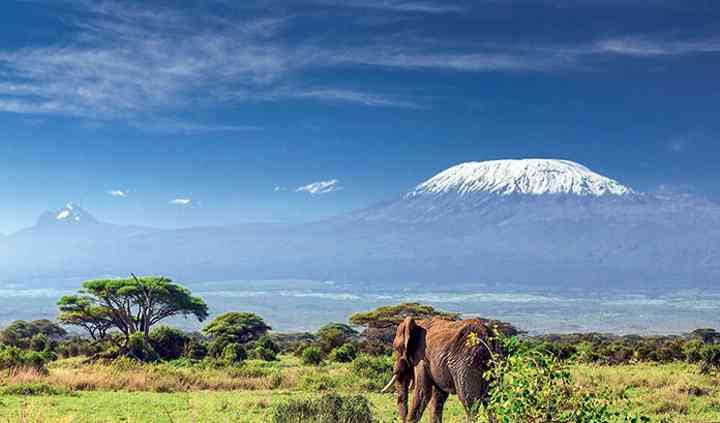 Un petit safari en Tanzanie