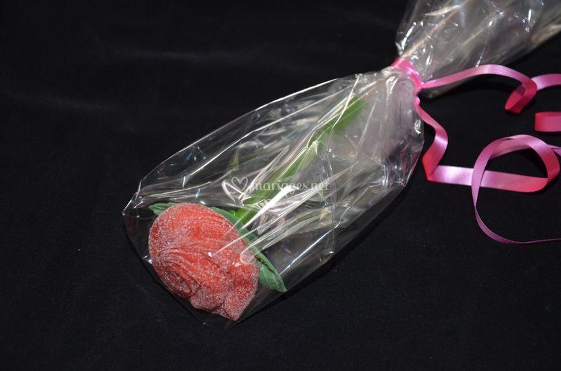 Rose en bonbon