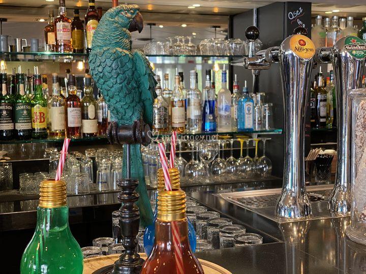 Bar / boisson