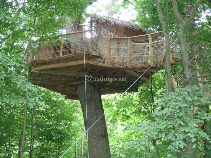 La cabane nid de Cassandre