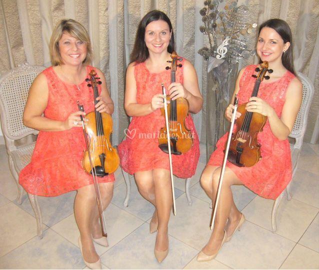 3 violons