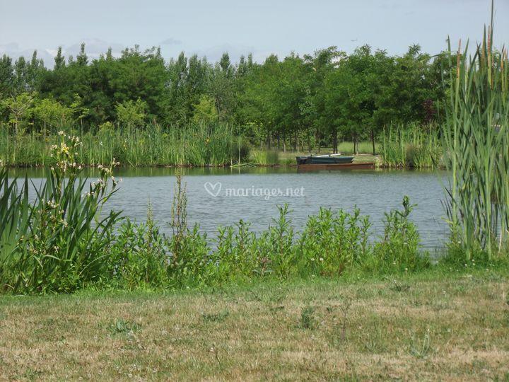 L'étang sécurisé