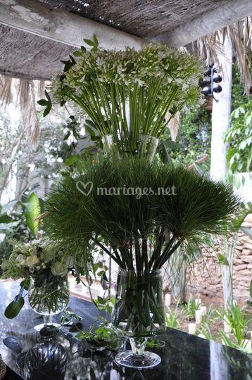 La Broc&Fleurs:  agapantes