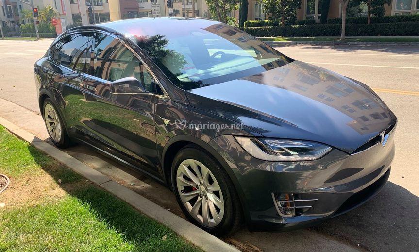 Tesla X Lannister