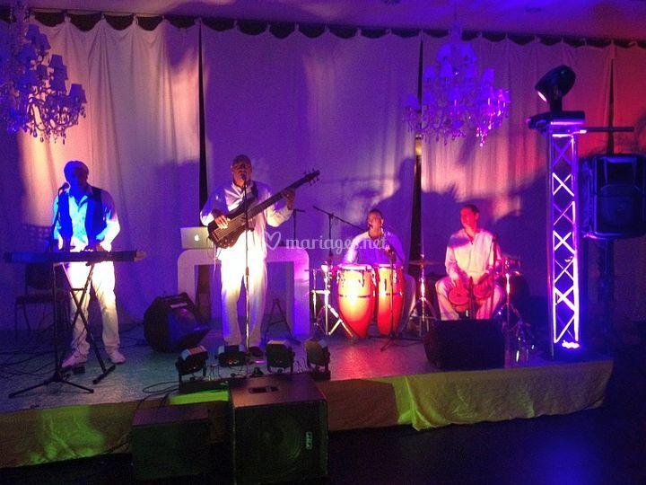 Cubana latino concert