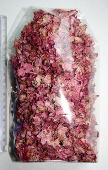 Confettis naturels (pink)