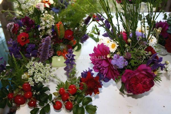 Fleurs fraîches des jardins