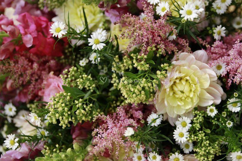 Les fleurs...