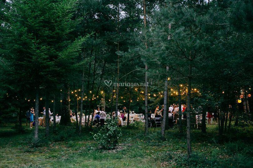 La réception dans les bois
