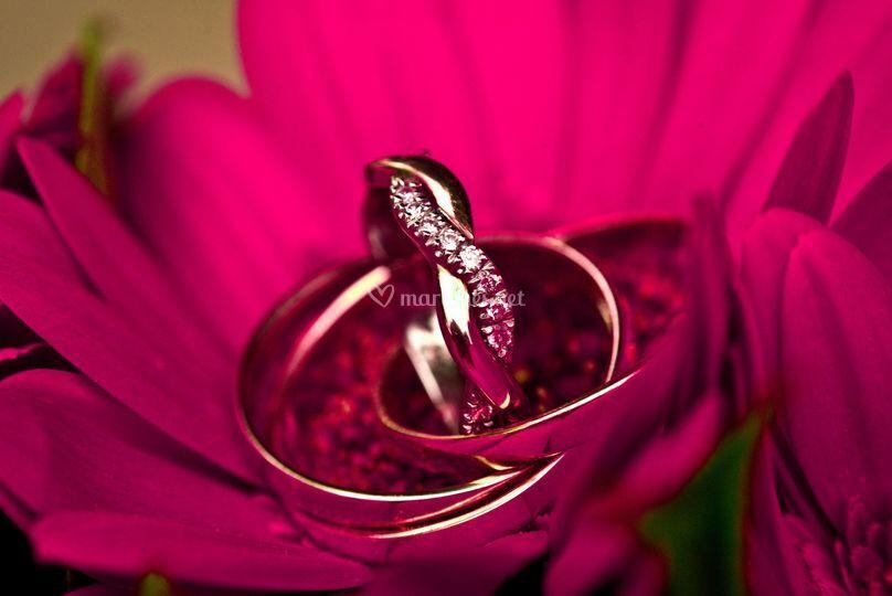 Alliance mariage ©Flotograff
