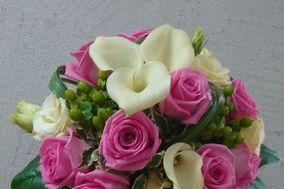 Loire Fleurs