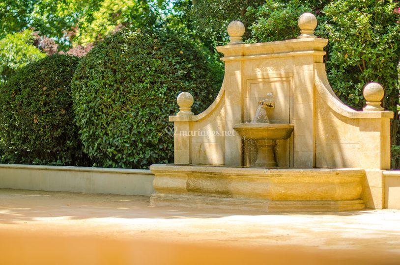 Fontaine et cigales